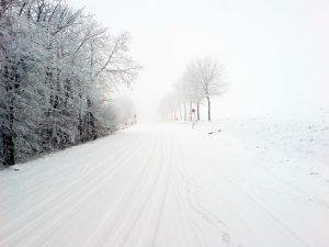 Winter auf der Herchenhainer Höhe