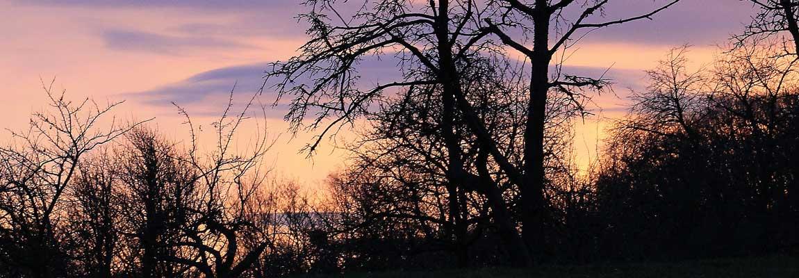 Sonnenuntergänge auf der Herchenhainer Höhe von der Sonnenterrasse genießen