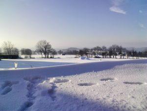 Winter Schnee Vogelschmiede
